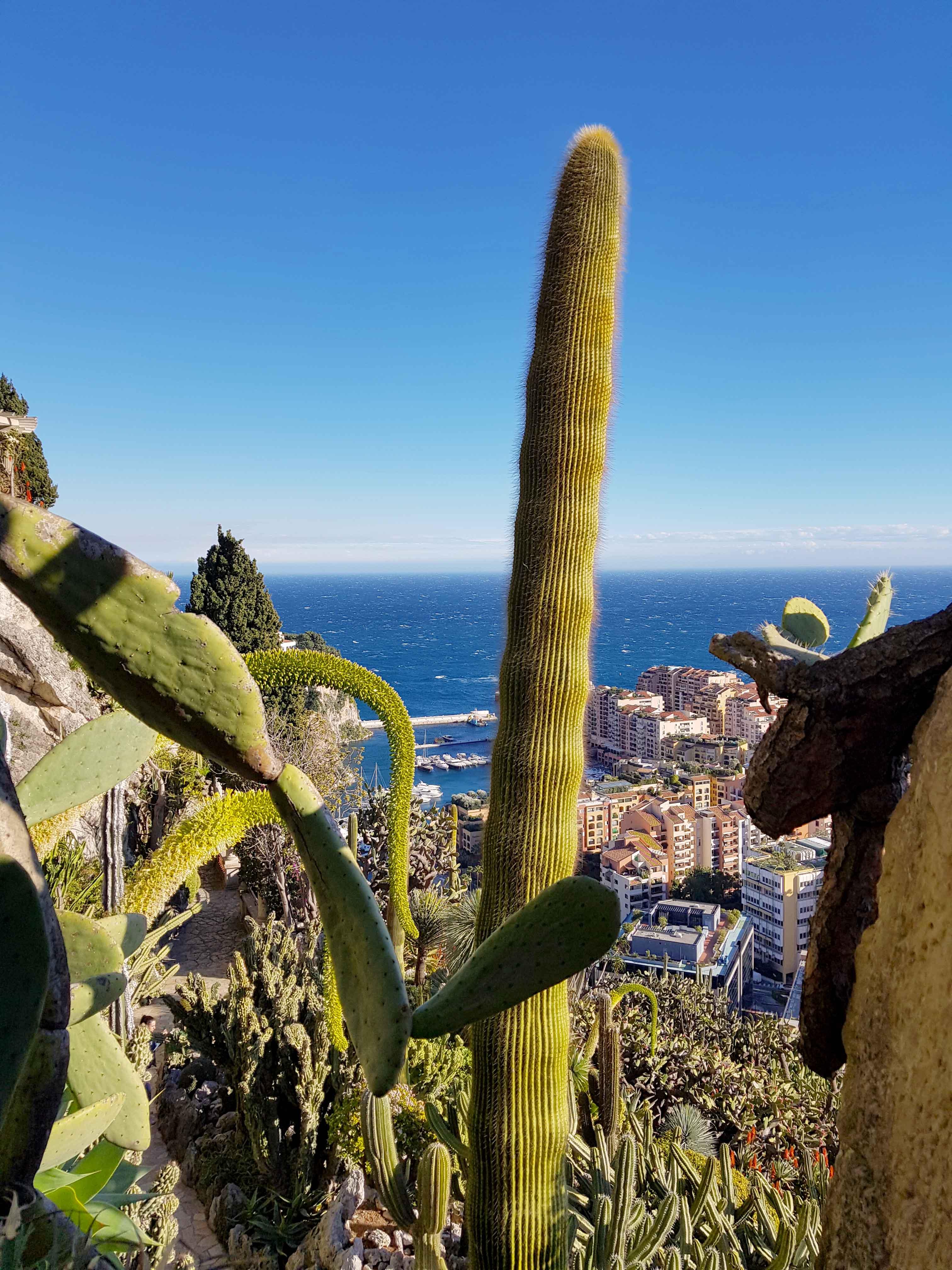 Nizza Monaco 2019 Mosi4travel